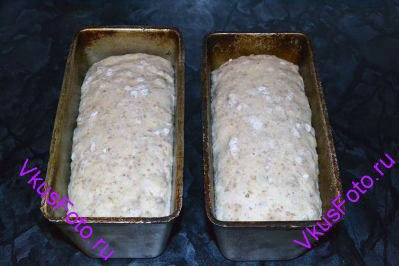 Поставить в теплое место на 1 час или пока хлеб не увеличится вдвое.