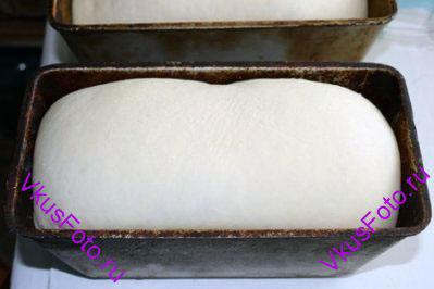 Поднявшееся тесто выложить на доску с мукой и разделить на 2 части. Из каждой части <a href=http://www.vkusfoto.ru/raznoe/formovanie_buhanki/158.html>сформировать буханку</a>  и уложить в смазанную маслом форму. Формы поставить в теплое место, пока хлеб не увеличится в 3 раза.