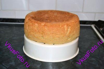 Выпекать бисквит в разогретой духовке 40 минут при температуре 180 градусов.