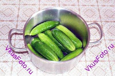 Огурцы промыть, уложить в посуду, в которой будет солиться.